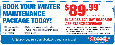 Winter Maintenance - $89.99
